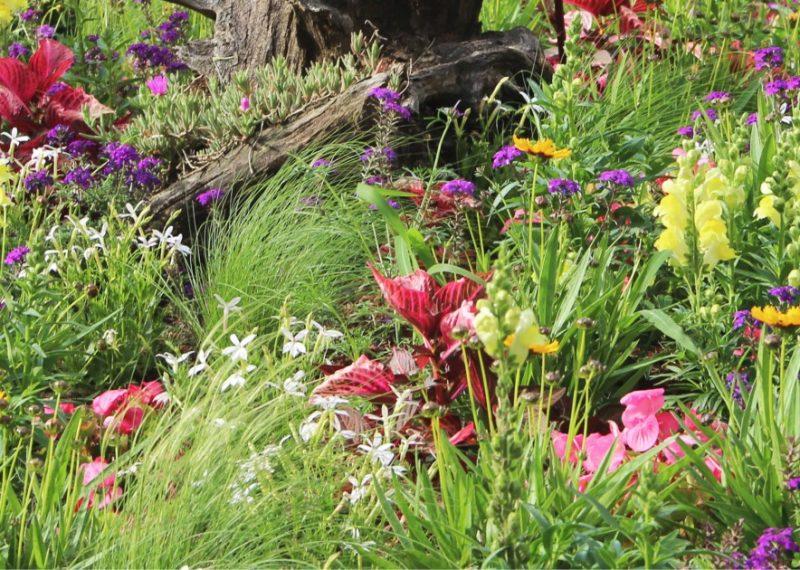 Fleurissement Espaces Verts