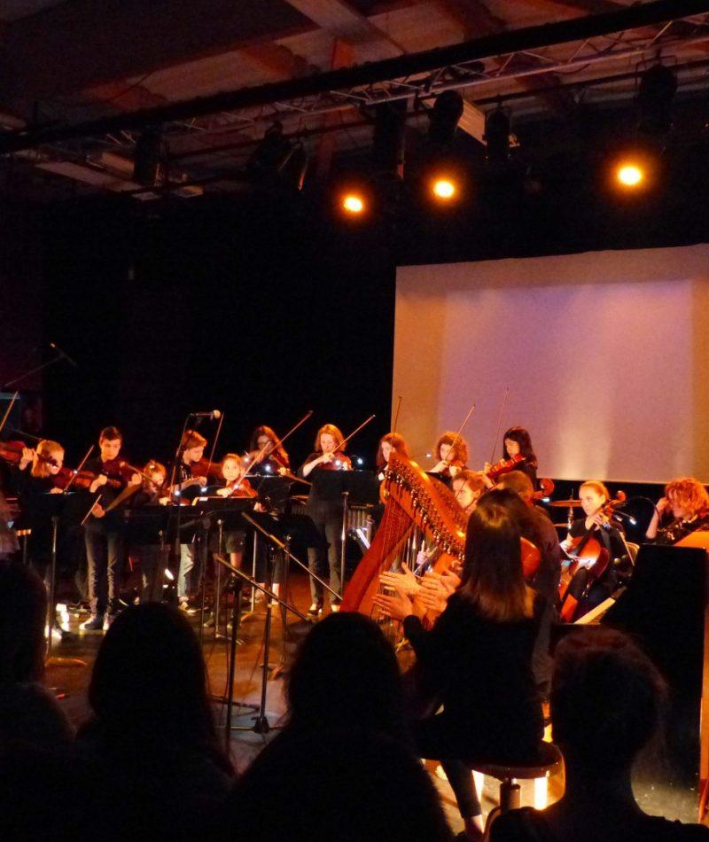 Concertsuet